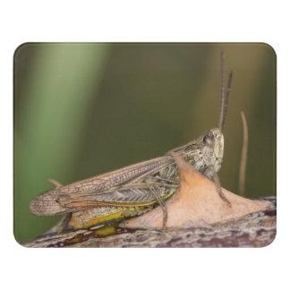 Common Field Grasshopper Door Sign