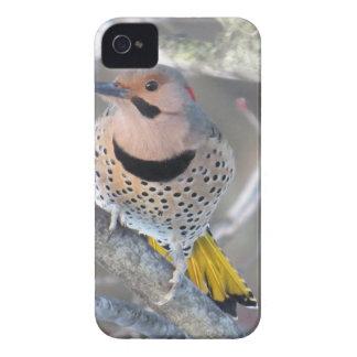 Common Flicker Case-Mate iPhone 4 Case