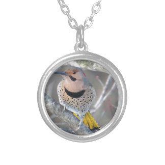 Common Flicker Silver Plated Necklace