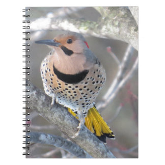 Common Flicker Spiral Notebook