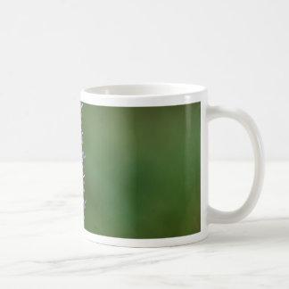 Common Heather (Calluna vulgaris) Coffee Mug