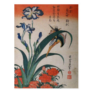 Common Kingfisher, Iris Japonica and Dianthus Postcard