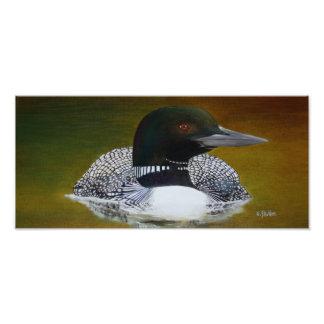 Common Loon Photo Print