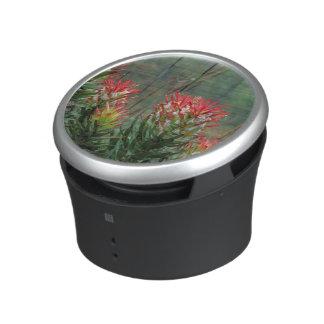 Common Mimetes (Mimetes Cucullatus) Bluetooth Speaker