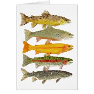Common Pennsylvania Trout Card