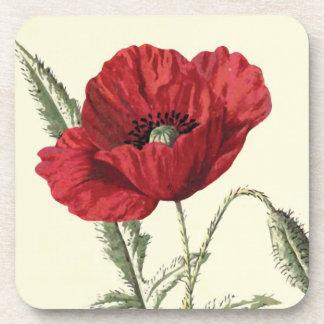 """""""Common Poppy"""" Botanical Illustration Coaster"""