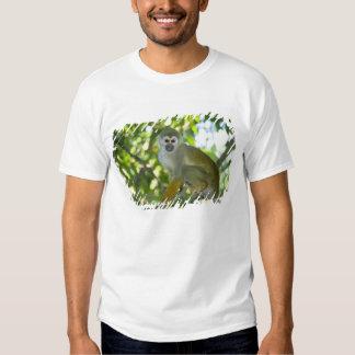 Common Squirrel Monkey (Saimiri sciureus) Rio Shirt