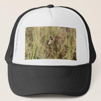 Common Stonechat (Saxicola torquatus) Trucker Hat