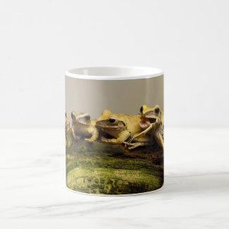 Common Tree Frog Polypedates Leucomystax Basic White Mug