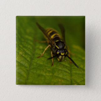 Common Wasp 15 Cm Square Badge