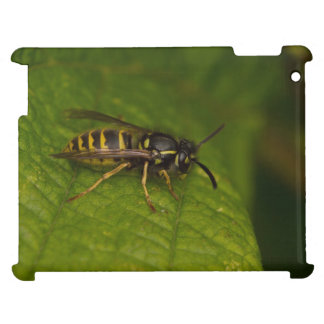 Common Wasp Cover For The iPad