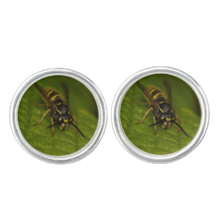 Common Wasp Cuff Links