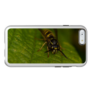 Common Wasp Incipio Feather® Shine iPhone 6 Case