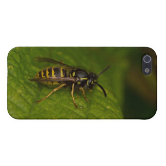 Common Wasp iPhone 5/5S Covers