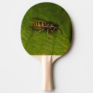Common Wasp Ping Pong Paddle