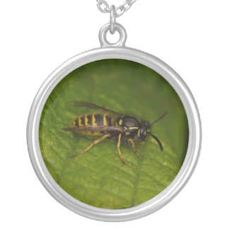 Common Wasp Silver Plated Necklace