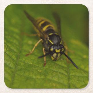 Common Wasp Square Paper Coaster