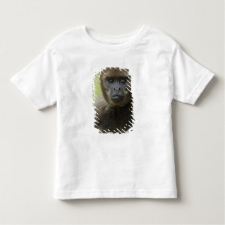 Common Woolly Monkey Lagothris lagothricha), Tshirts