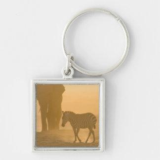 Common Zebra, Equus burchelli, and Elephant, Keychain