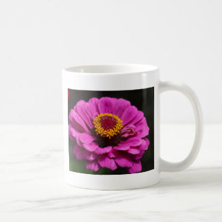 Common zinnia (Zinnia elegans) Coffee Mug