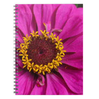 Common zinnia (Zinnia elegans) Spiral Note Book