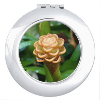 Compact Mirror - Beehive Ginger