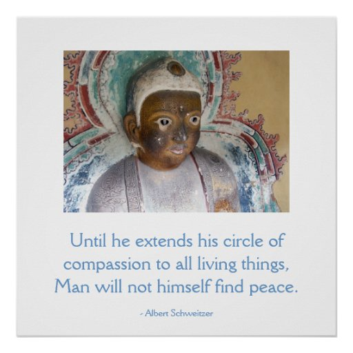Compassion for Animals Buddha Poster