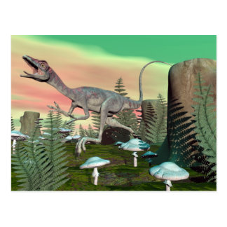 Compsognathus dinosaur - 3D render Postcard