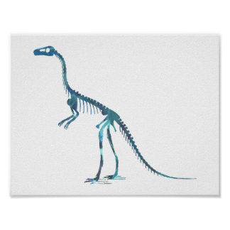 compsognathus skeleton poster