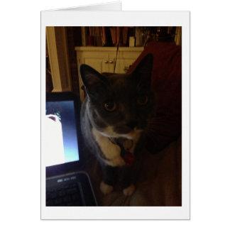 Computer Kitty Card