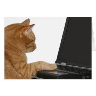 computing cat card