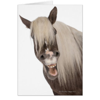 Comtois horse is a draft horse - Equus caballus Card