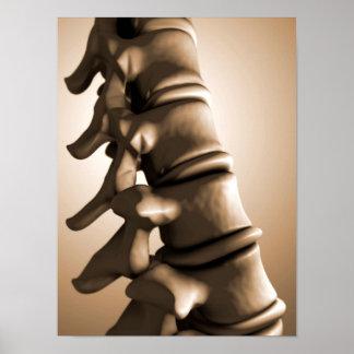 Conceptual Image Of Human Backbone 4 Print