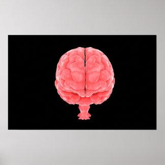 Conceptual Image Of Human Brain 3 Poster