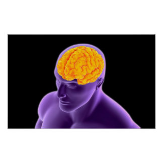 Conceptual Image Of Human Brain 8 Posters