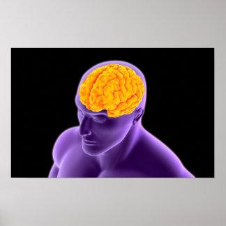 Conceptual Image Of Human Brain 8 Poster