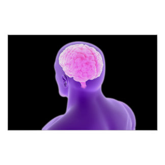 Conceptual Image Of Human Brain 9 Posters
