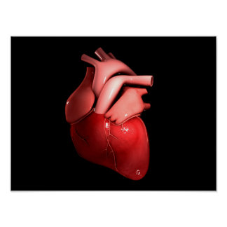 Conceptual Image Of Human Heart 1 Poster