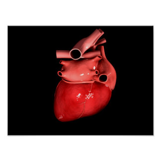 Conceptual Image Of Human Heart 3 Poster