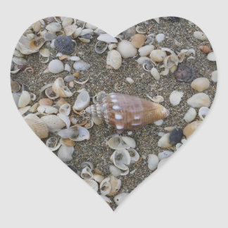 Conch Seashell Treasure Heart Sticker
