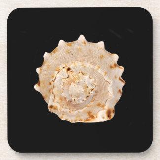Conch Shell Hard Plastic Coasters
