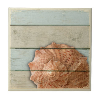 Conch Shell Tile