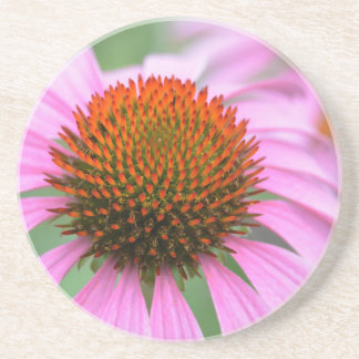Cone flower beverage coasters