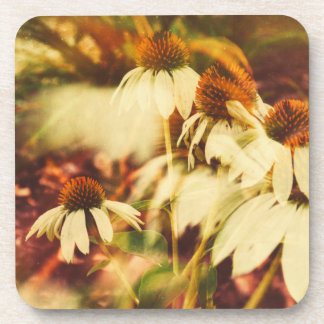 Cone Flowers (Warm Coloring) Drink Coaster