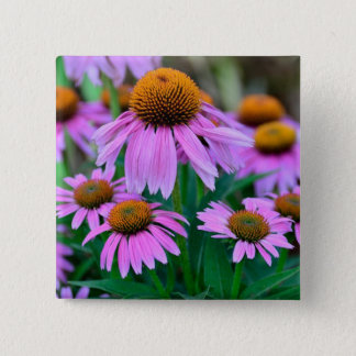 Coneflower 15 Cm Square Badge