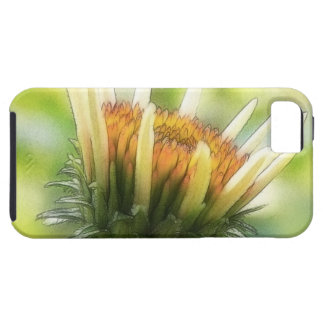 Coneflower Bud iPhone 5 Cover