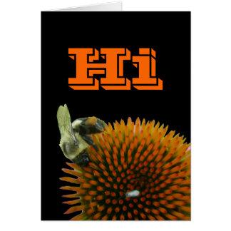 Coneflower & Eastern Carpenter Bee Items Greeting Card