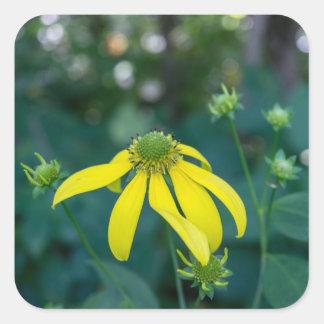 Coneflower Yellow Wildflower Square Stickers