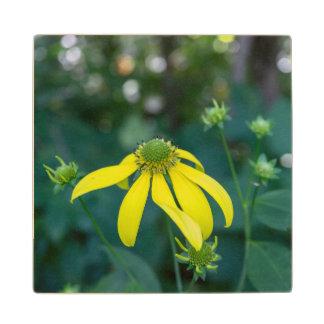 Coneflower Yellow Wildflower Wooden Coaster Wood Coaster