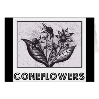 Coneflowers Cards